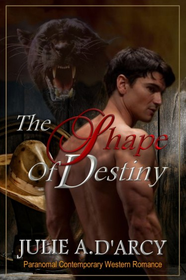 The Shape of DestinyPRINT COVER400